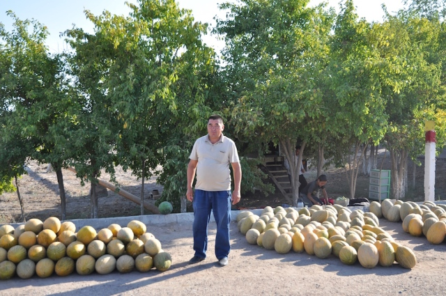 Melonenhalt im Nirgendwo