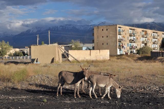 Dörfliche Stimmung in Kazarman